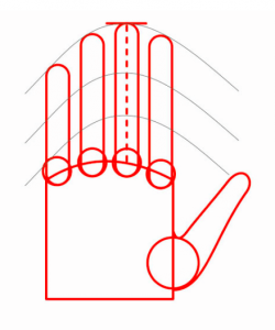Mão 2
