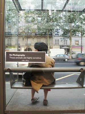 Funny Signs Bus Bench