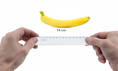 Ukuran penis ideal