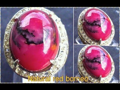 Harga dan Keunikan Batu Red Borneo Kalimantan