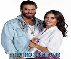 capítulo 15 - telenovela - pajaro soñador  - univision