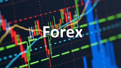 veteran forex traders
