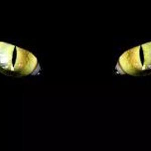 Mustika Mata Kucing Wingit
