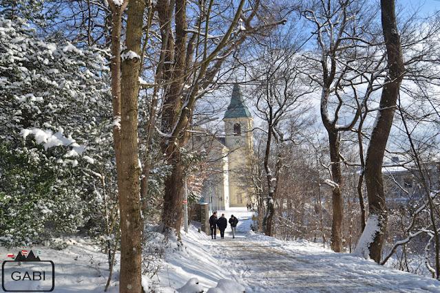 Wiedeń Kahlenberg zimą