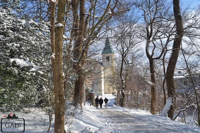 Zimowy Kahlenberg