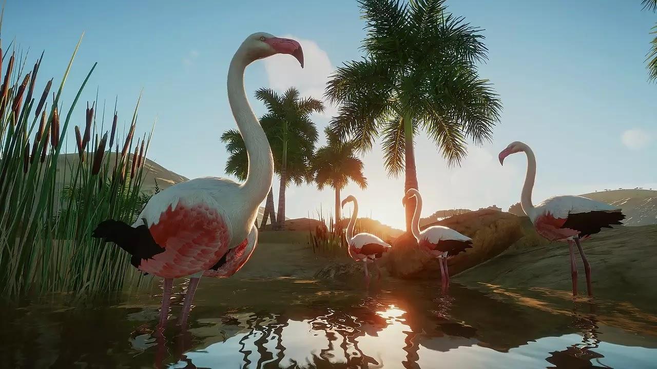 Planet Zoo Deluxe Edition capturas