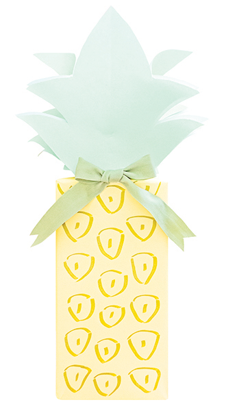 Pineapple Package by Love. Luck. Kisses & Cake | LLK-C.com