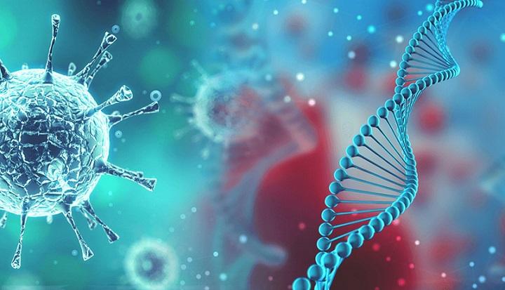 Ilmuwan Temukan Mutasi Virus Corona yang 10 Kali Lebih Menular di Malaysia, naviri.org, Naviri Magazine, naviri majalah, naviri