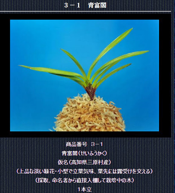 http://www.fuuran.jp/3-1.html
