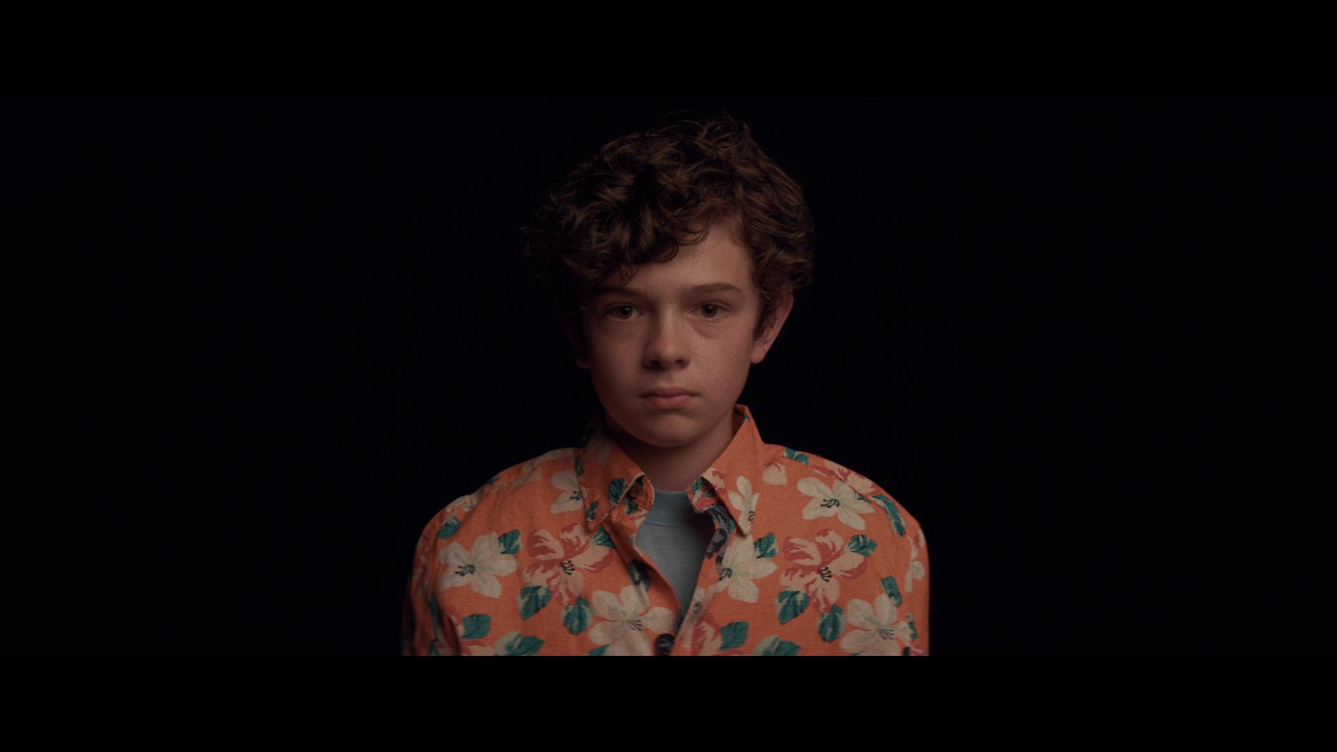 Honey Boy: Un niño encantador (2019) 1080p Remux Latino