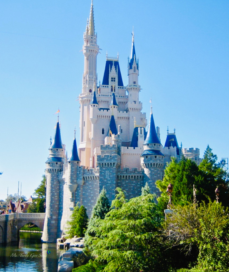 How many times have you been to the Magic Kingdom in Florida's Disneyworld? | Ms. Toody Goo Shoes