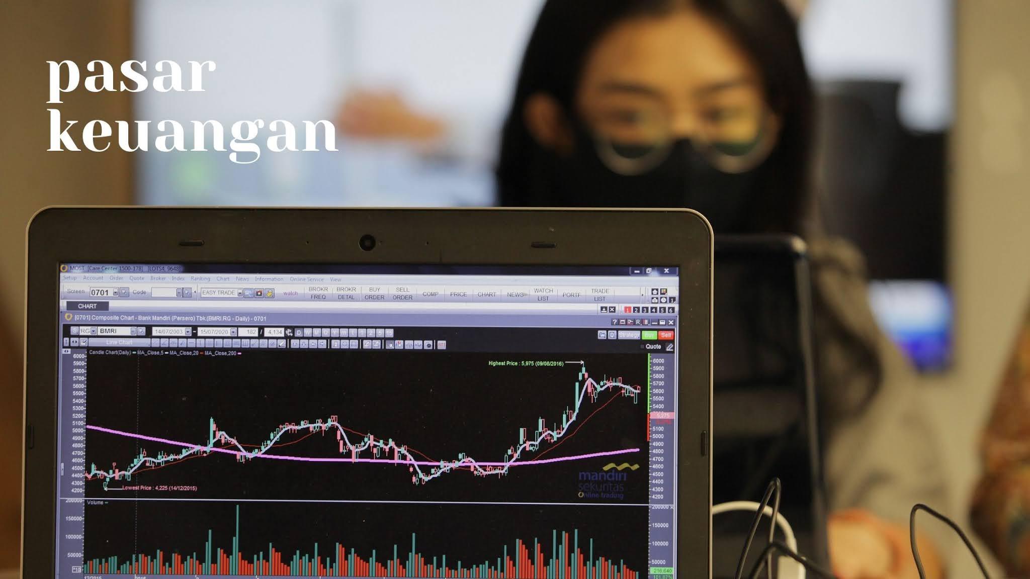 Lembaga keuangan ini berdiri di antara penerbit sekuritas (perusahaan) dan pemilik akhir sekuritas (investor individu).
