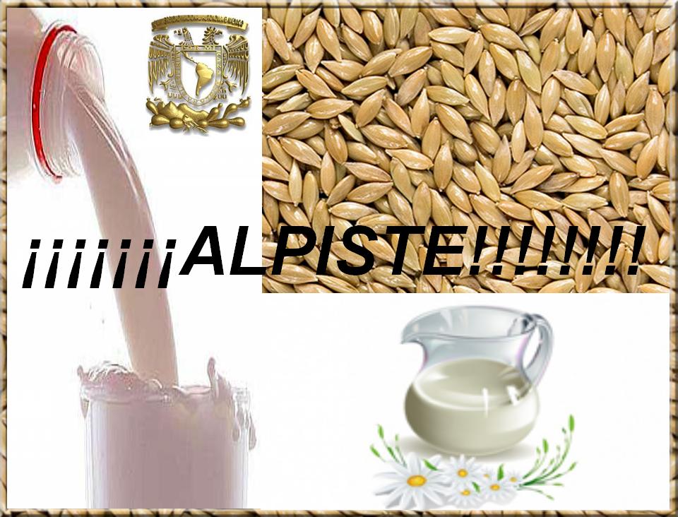 batidos de proteinas para adelgazar donde comprar alpiste