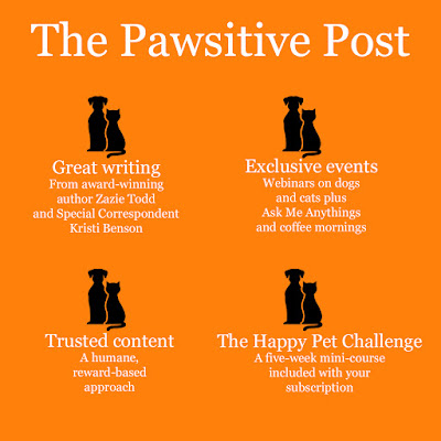 Help your pet live their best life: Graphic from The Pawsitive Post with what to expect, illustrated by a dog and cat sitting together.