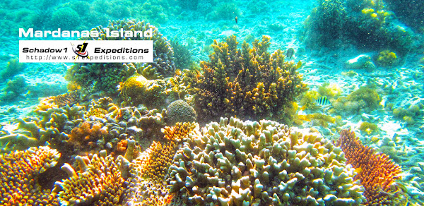 Mardanas Island Underwater - Schadow1 Expeditions