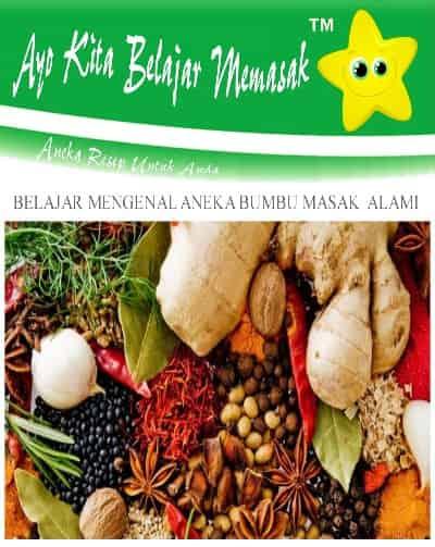 Jenis - Jenis Rempah Khas Indonesia