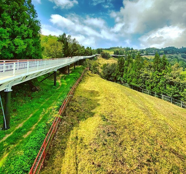 Sheep farm and 6 spectacular views of yellow leaves in Asia