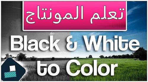 دورة شرح filmora9 تأثير تحويل الألوان إلى الأبيض والأسود Black and White to Color Transition