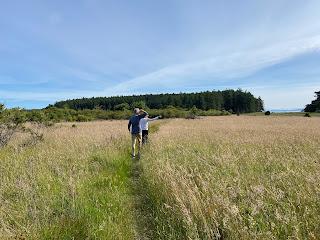 A grassy path on the Henry Island preserve.