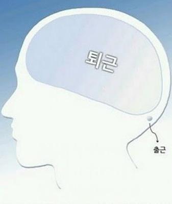 사이비 마음수련하는 뇌 구조의 실체