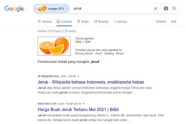 hasil pencarian