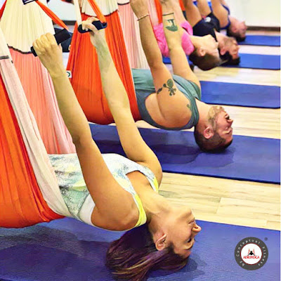 Formation enseignants Yoga Aerien