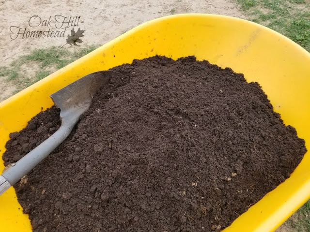 Compost in yellow wheelbarrow