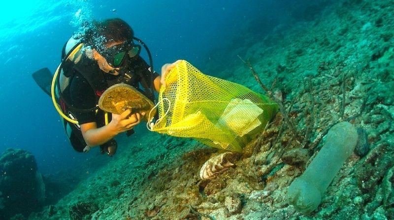 https://www.marenews.com.br/2021/09/dezoito-de-setembro-dia-mundial-da-limpeza-de-rios-e-praias.html