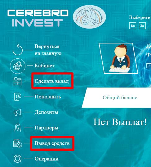 Регистрация в Cerebro Invest 2