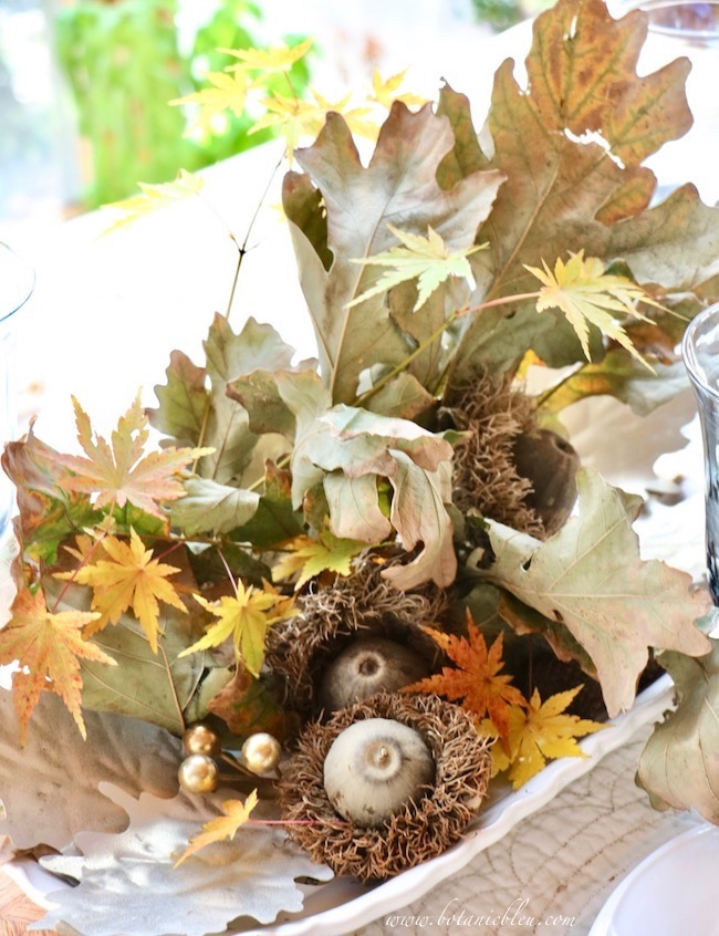 Thanksgiving Natural Centerpiece tips for using colorful Japanese leaves