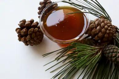 Πωλούνται 30 δοχεία μέλι πεύκου στο Αίγιο