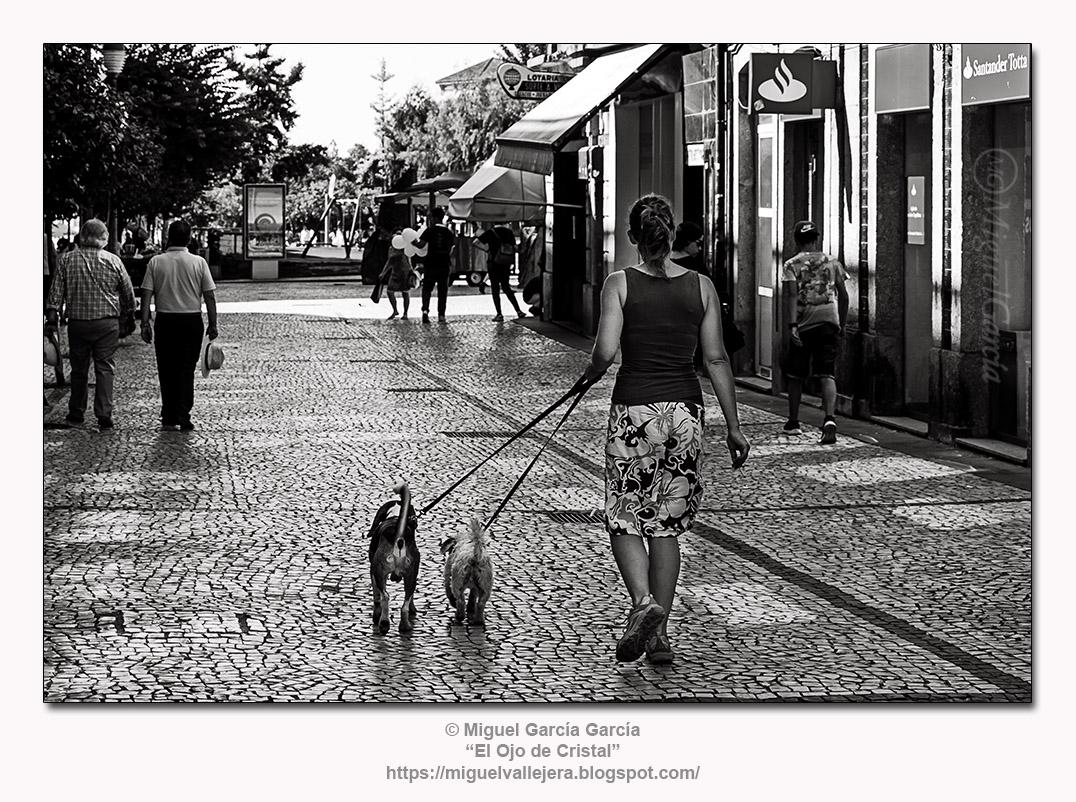 Braga (Portugal).- Paseo Canino.