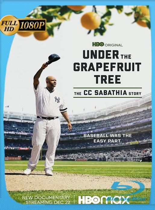 Under The Grapefruit Tree: The CC Sabathia Story (2020) AMZN WEB-DL 1080p Latino [Google Drive] Tomyly