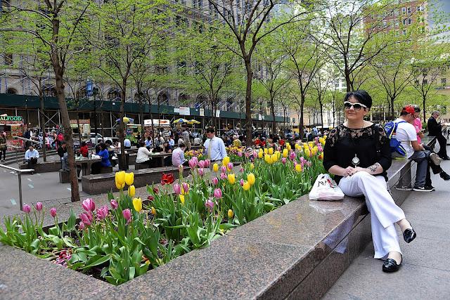 tulipany, nowy jork, wycieczka, travel, new york