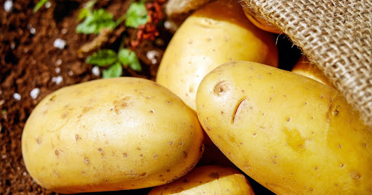 6 Proven Health Benefits of Potato You Need to Know