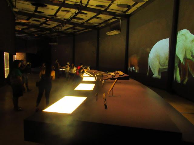 museu da natureza piaui