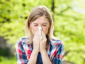 10 remedios de bricolaje para las alergias estacionales