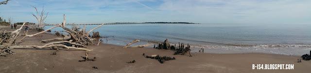 Jacksonville, Florida, Driftwood