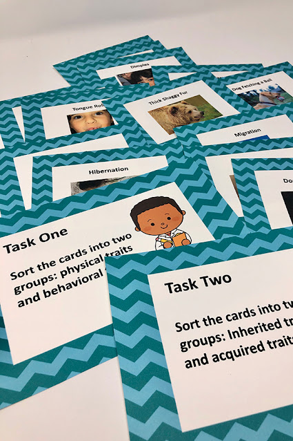 Task cards for 3rd grade science
