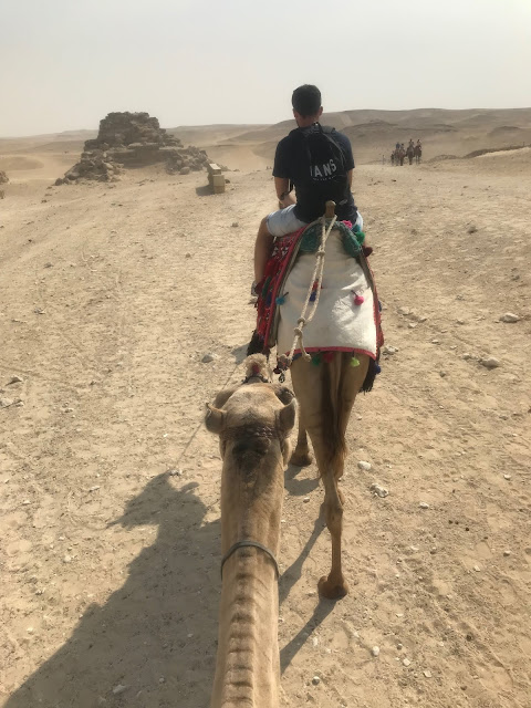 Things to do in Egypt Cairo - Camel riding