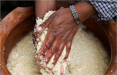 What is Quinoa?