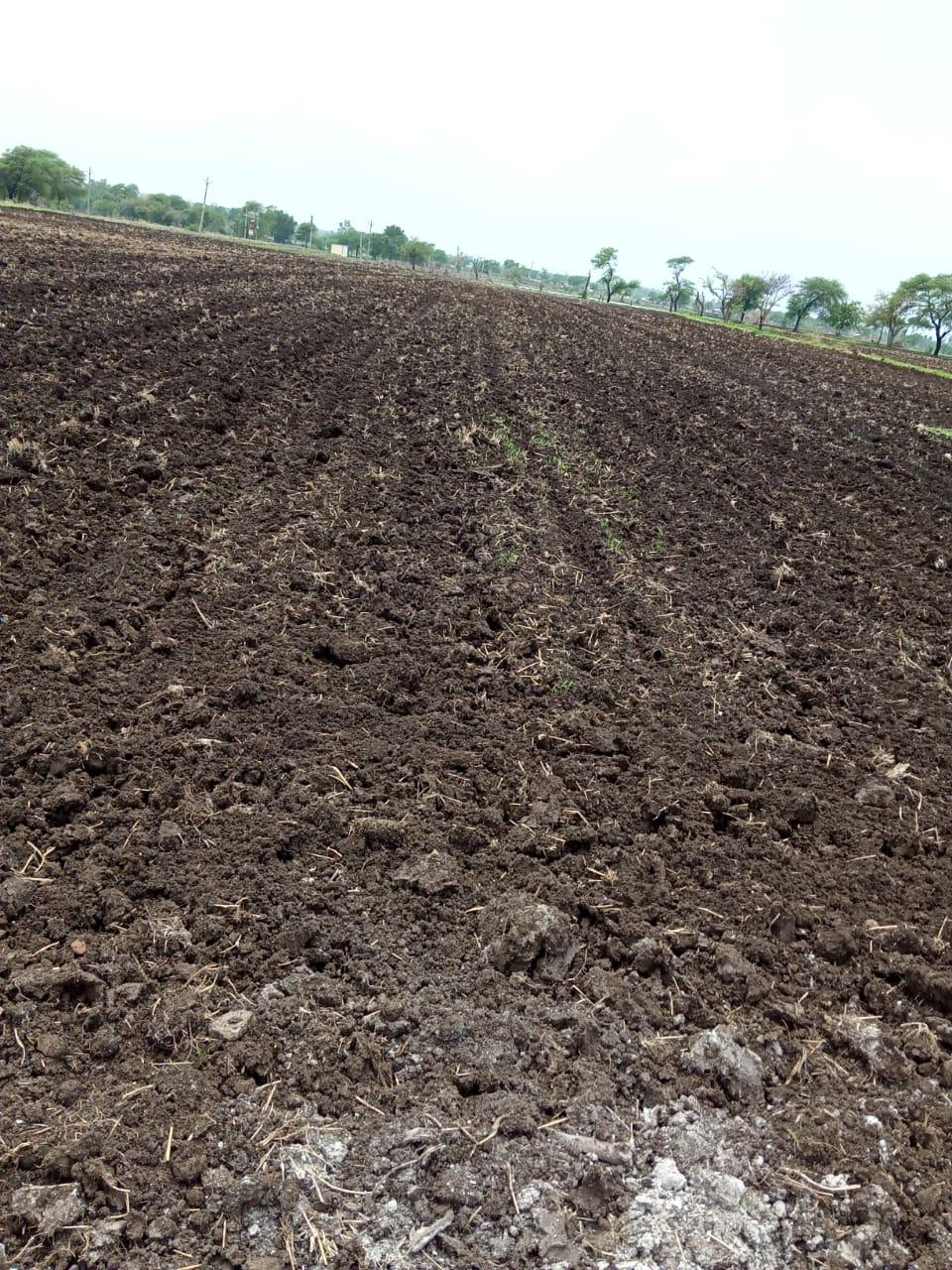 खराब बीज बेचने वाले व्यापारी के खिलाफ कार्यवाहीं की मांग....  क्षेत्र में अधिकारियों की अनदेखी से गरीब किसान हो रहे परेशान...