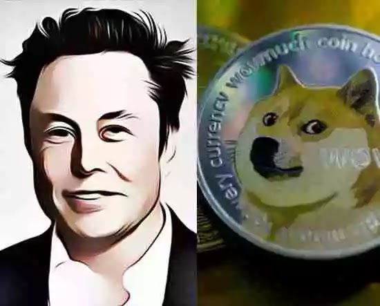 SpaceX ties with GEC to sell space art through cryptocurrency, Dogecoin used as unit of account between SpaceX and GEC