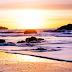 Nicholls & Myers Surf Report
