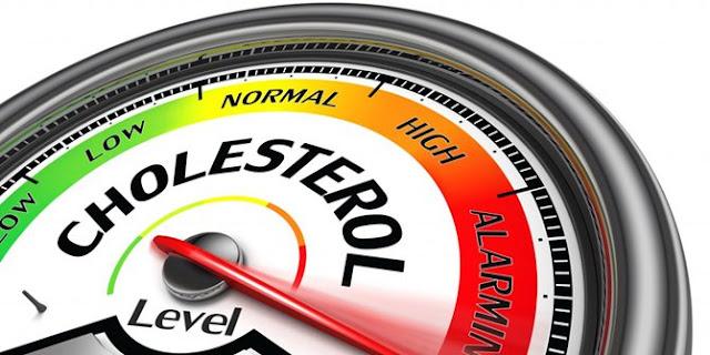 Manfaat kolesterol