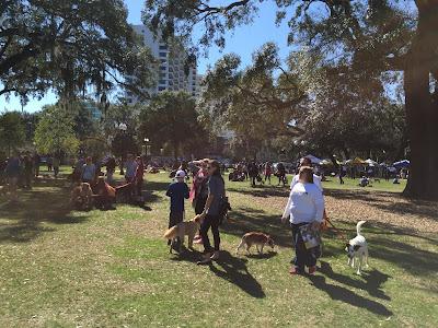 Orlando dog event