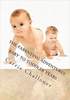 The Parenting Adventures- Baby to Toddler years