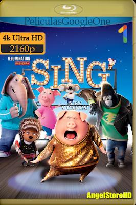 Sing ¡Ven Y Canta! (2016) [4K UHD [HDR] [Latino-Inglés-Español] [GoogleDrive] – By AngelStoreHD