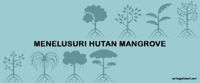 Travel Blogger Medan - Anak Rumahan Melalak ke Hutan Mangrove