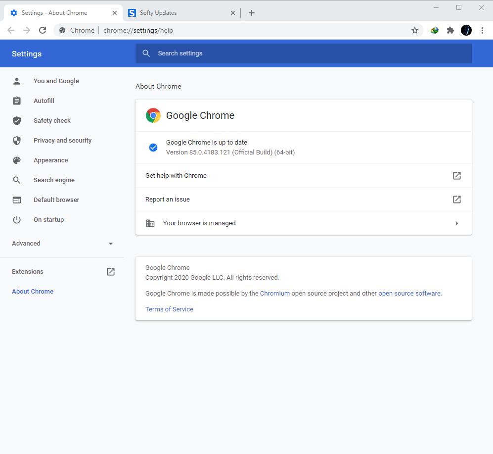 Google Chrome Browser 85.0.4183.121